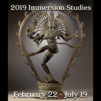 Immersion studies 2019